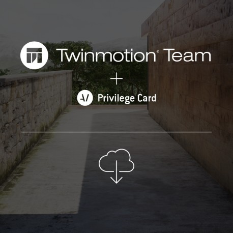 Twinmotion 2019 TEAM network license + TEAM Privilege Card for 2 years -- per network seat